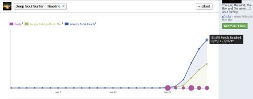 DeepSoulSurfer.com Facebook stats