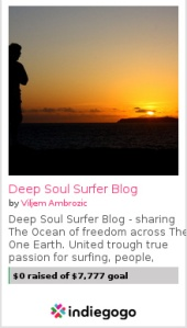 Deep Soul Surfer Book