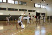Capoeira Training
