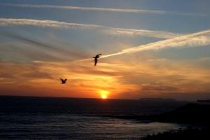 Sunset Of Unfolding True Dreams