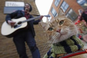 Street Cat Named Bob, London UK