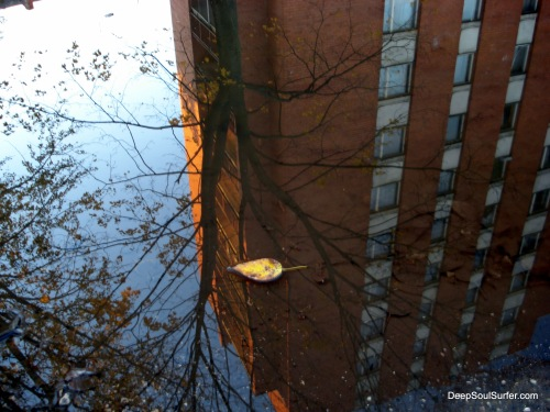 Reflections, Riga, Latvia