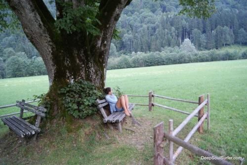 Logar's Linden, Logarska Dolina, Slovenia