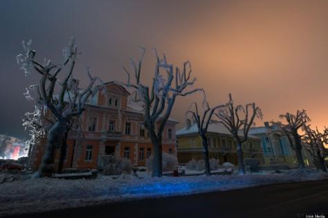 Froezn slovenia Trees (c) Iztok Medja